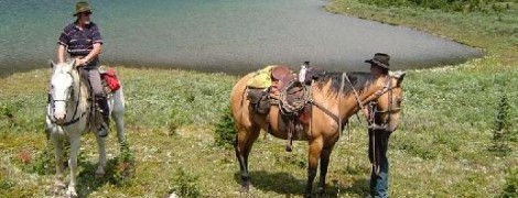 Cartello Targa in Metallo Vacanza Agenzia Di Viaggi Cowboy di Calgary